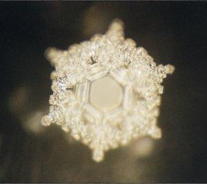 waterkristal masuru emoto
