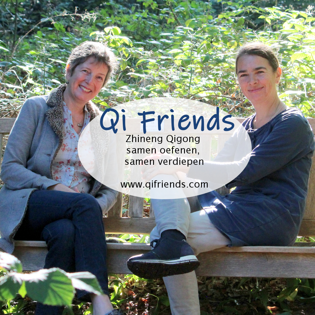 Qi Friends Zhineng Qigong workshops